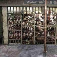 1_PrisonHoldingCell_V1_061012_JM